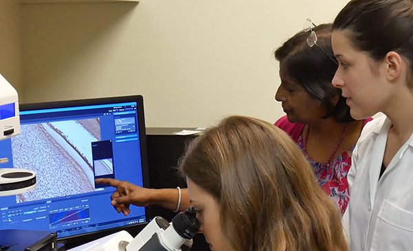 A professor at the College of Dentistry points at a computer screen showing the magnified image from a microscope of gum tissue, while two students are watching.