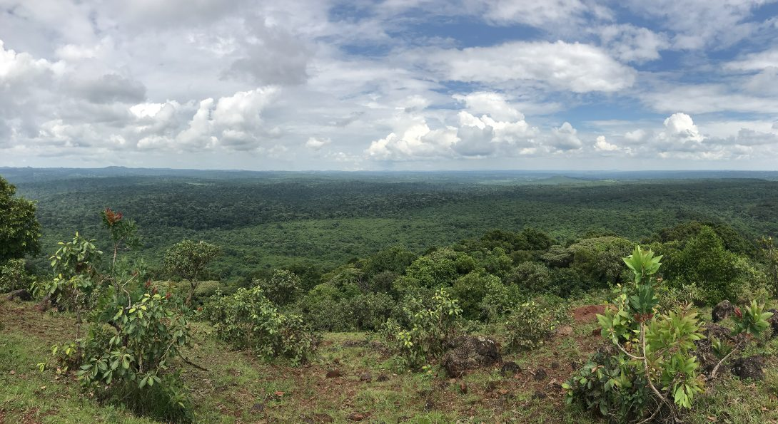 View at the top of the hike