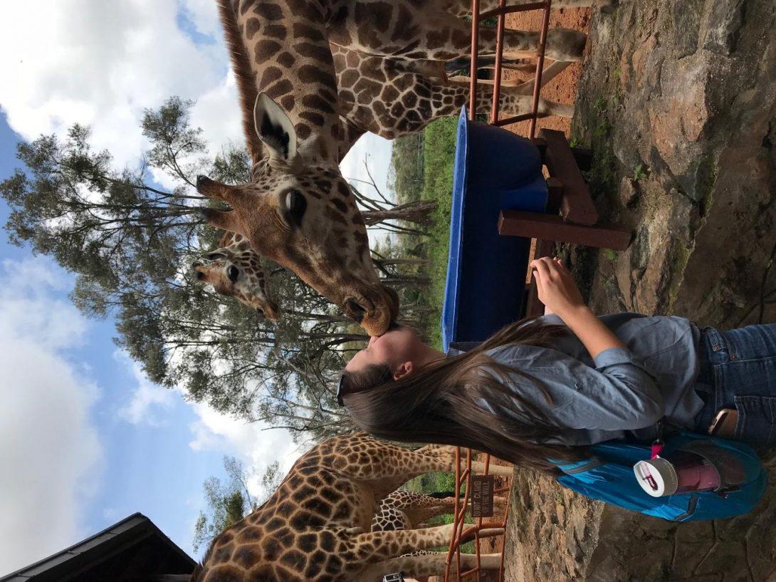 giraffae