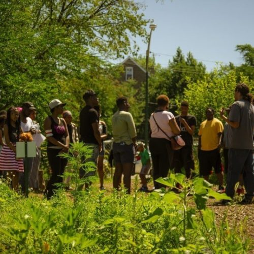 A meeting in a community garden led by the Chicago Food Action Policy Council.
